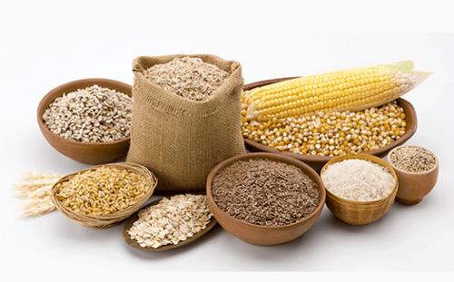 Xuất khẩu lúa mạch Australia sang Trung Quốc bị hạn chế do thuế xuất khẩu tăng