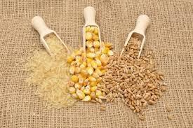USDA dự báo nguồn cung lúa mì của Mỹ thắt chặt hơn cho năm 2021-22