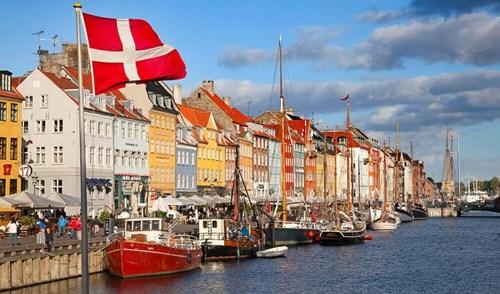 Xuất khẩu hàng hoa sang Đan Mạch tăng trưởng