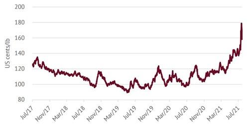 ICO: Giá cà phê tăng lên mức cao nhất trong hơn 6 năm - Ảnh 1.