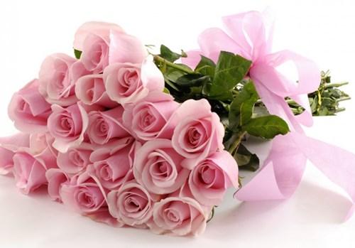 Kết quả hình ảnh cho hoa hồng sinh nhật