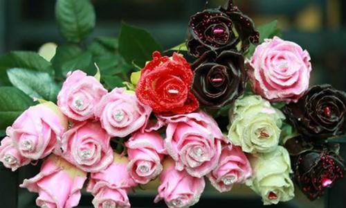 Kết quả hình ảnh cho hoa nhập khẩu