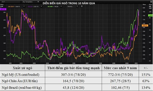 Sức nóng của thị trường ngô chưa dịu đi dù giá vừa giảm mạnh - Ảnh 1.