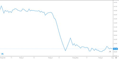 Biến động giá cổ phiếu YEG từ 28/1 đến 14/6. Nguồn: Fire Ant.