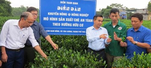 Thăm quan, chia sẻ kinh nghiệp mô hình chè hữu cơ tại xã Tân Cương (TP Thái Nguyên). Ảnh: VB.