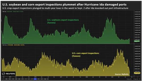 Việc giám sát xuất khẩu đậu tương và ngô Mỹ giảm sau khi bão gân thiệt hại ở các cảng biển.