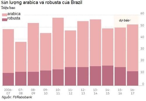 Đối với một số nhà rang xay và chế biến cà phê, giá robusta tăng trong khi arabica giảm sẽ khiến họ giảm tỷ lệ sử dụng robusta khi pha trộn, và đồng thời tăng arabica.