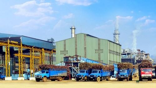 Hiện các nhà máy đường trong nước đang gặp rất nhiều khó khăn do đường giá rẻ từ Thái Lan tràn vào sau khi ATIGA có hiệu lực từ 1/1/2020. Ảnh: ND.