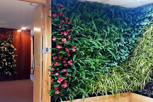Các phòng làm việc ngăn cách nhau bởi những giàn dây leo để tạo nên một không gian mở có sự kết nối cao nhưng vẫn đảm bảo tính riêng tư, độc lập, không kém gì văn phòng của các tập đoàn hàng đầu thế giới. </p><p>