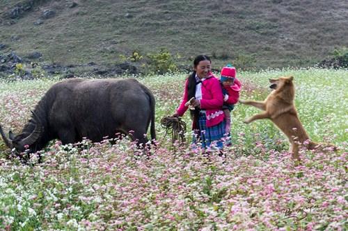wanderlust-tips-toi-moc-chau-thang-12-am-lich-de-don-tet-cung-nguoi-hmong-10