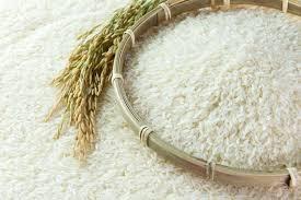 Giá gạo Thái Lan cao nhất 9 tháng do nhu cầu mới, gạo Việt Nam vững