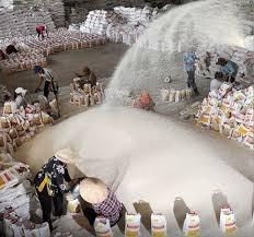 """Hiệp hội Lương thực Việt làm gì khi Thái Lan xả kho gạo """"khủng""""?"""