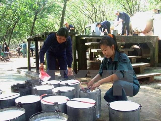 """Đầu tư nông nghiệp ở nước ngoài: Nhà đầu tư Việt không thể """"ngây thơ"""""""