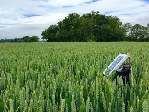 Nông nghiệp thông minh – xu hướng mới tại châu Á