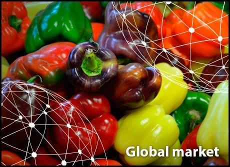 Toàn cảnh thị trường ớt toàn cầu