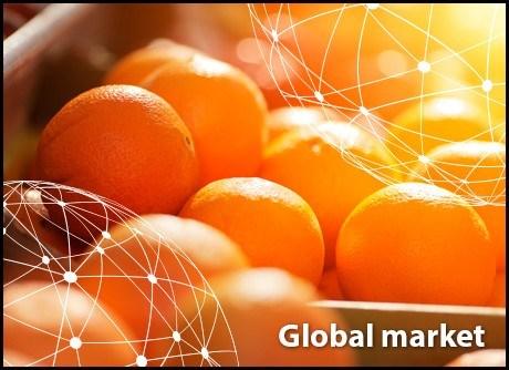 Toàn cảnh thị trường cam thế giới