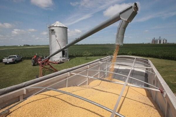 Chiến tranh thương mại gây xáo trộn dòng chảy nông sản toàn cầu