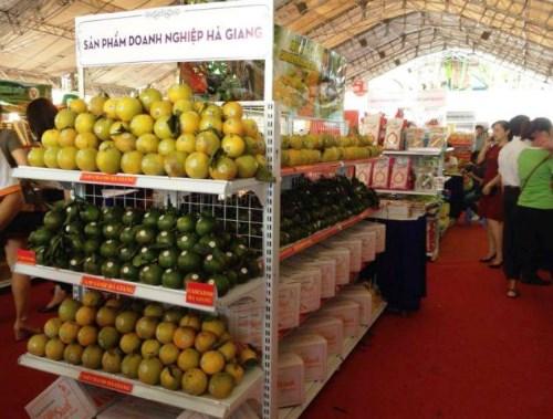 Góp phần phát triển các sản phẩm chủ lực tỉnh Hà Giang