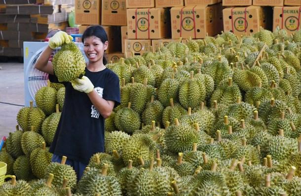 Châu Á năng động: Trung tâm mới của sự tăng trưởng