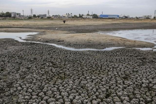 Khủng hoảng thời tiết toàn cầu làm giảm sản lượng mùa vụ tại châu Á