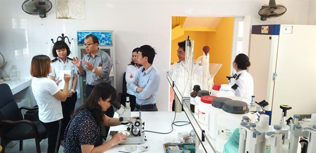 Chuyên gia Trung Quốc đánh giá cao thạch đen Việt Nam