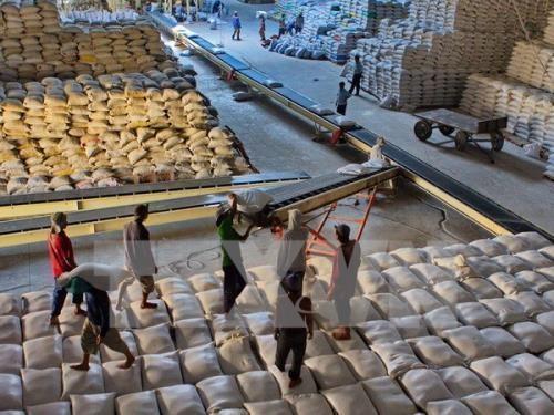 Không yêu cầu dỡ hàng ra khỏi container để kiểm tra gạo xuất khẩu