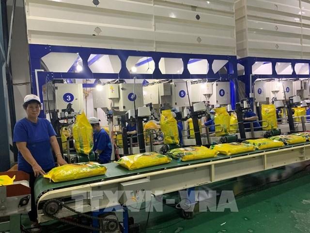 Phát triển thị phần và quảng bá gạo Việt Nam tại thị trường EU