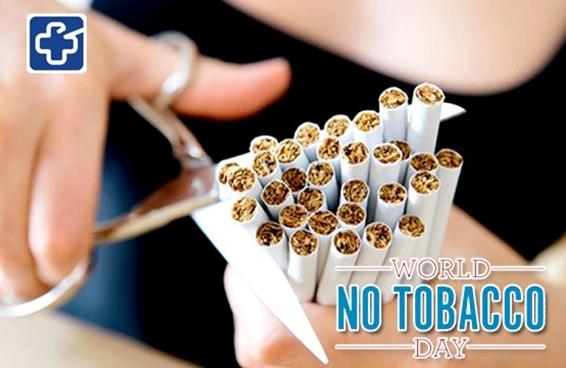 Những điều ít biết về qui trình sản xuất thuốc lá rất độc hại