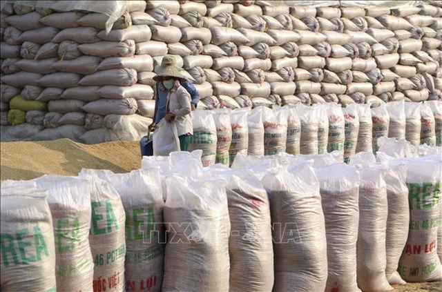 Năm 2021, ngành lúa gạo mang nhiều kỳ vọng tăng trưởng