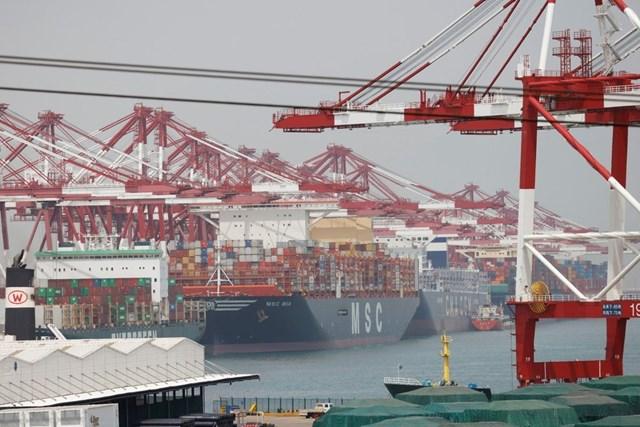 Giá cước vận tải biển ngày 14/6 cao nhất 1 tháng