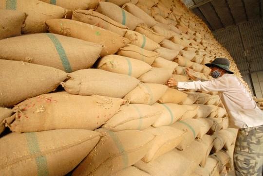 Philippines: NFA muốn nhập khẩu 250.000 tấn gạo