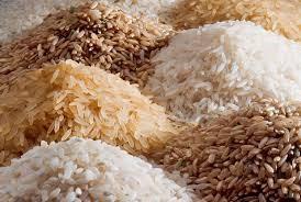 Giá gạo Châu Á đồng loạt giảm, chênh lệch giữa các xuất xứ thu hẹp