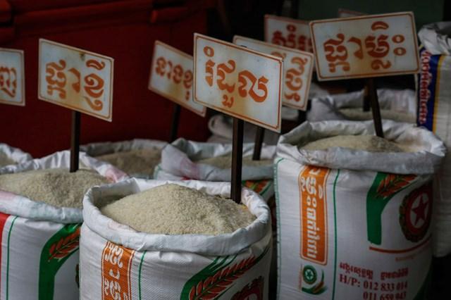 TT lúa gạo châu Á: Giá tăng mạnh sau khi Indonesia mua vào