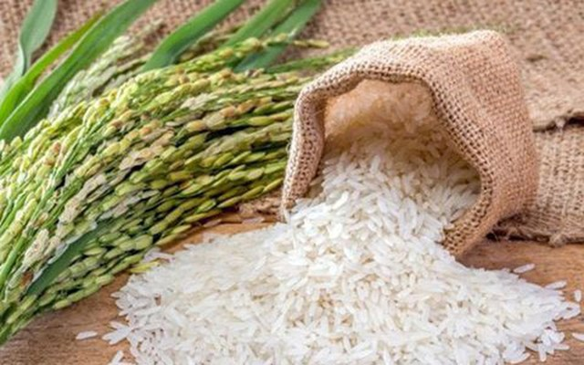 TT lúa gạo Châu Á tuần qua: Giá gạo Thái Lan thấp nhất 1,5 năm