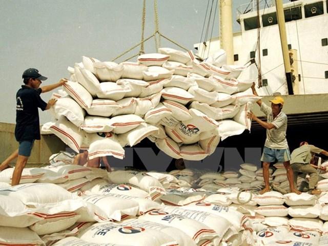 TT lúa gạo thế giới: Bangladesh muốn mua gạo Myanmar
