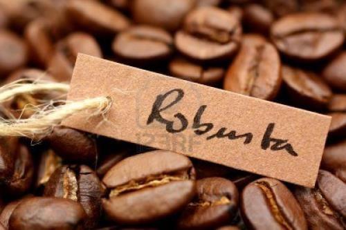 Xuất khẩu cà phê của Brazil giảm mạnh trong tháng 2/2017