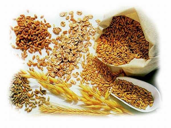 Báo cáo của FAO về tình hình và triển vọng TT lương thực thế giới