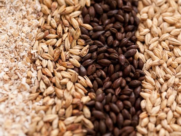 Báo cáo tháng 7 của USDA về thị trường ngũ cốc thế giới