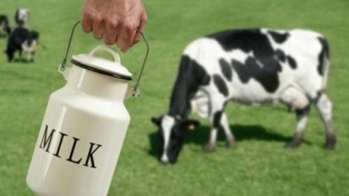 Giá sữa thế giới chững lại, Đông Nam Á mua mạnh
