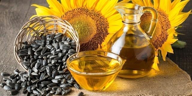 Giá dầu hướng dương Ukraina tăng do lo ngại về hạn chế xuất khẩu