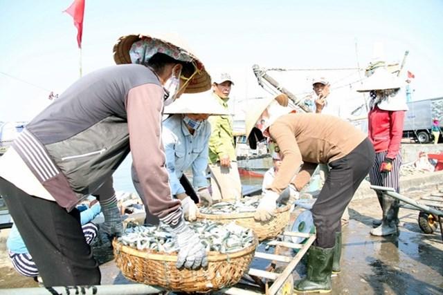 Khai trương 25 điểm kinh doanh hải sản an toàn tại Hà Tĩnh