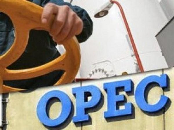 OPEC: Các nhà sản xuất dầu mỏ Mỹ đang kìm hãm phục hồi giá dầu