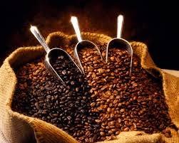 Thị trường cà phê, ca cao ngày 18/3/2016