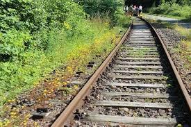 VBPL: Định giá và quản lý giá sản phẩm trong quản lý đường sắt