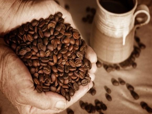 Thị trường cà phê, ca cao ngày 11/7/2016