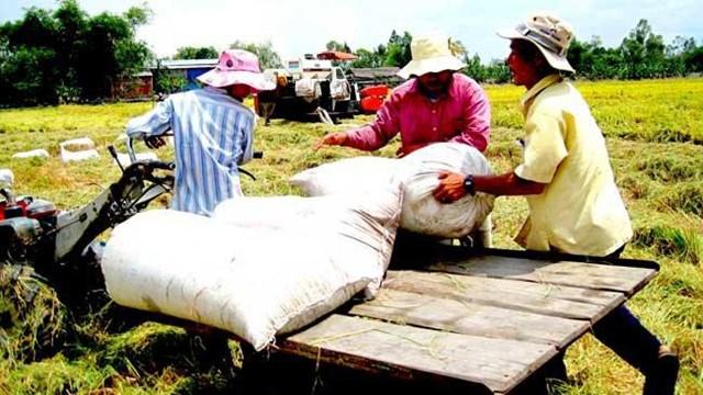 Thúc đẩy thương mại công bằng tại Việt Nam