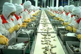 BCT đề nghị CP Úc sớm bãi bỏ lệnh tạm ngừng nhập khẩu tôm và thịt tôm chưa nấu chín