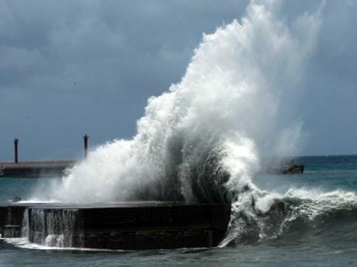 Chủ động đối phó với diễn biến của bão Hato