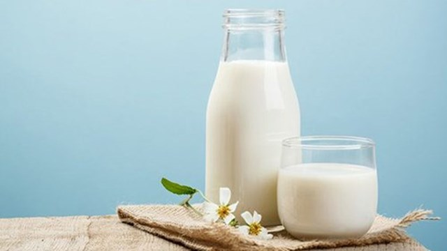 Yêu cầu của Bộ Y tế đối với các sản phẩm sữa tươi trong Chương trình Sữa học đường