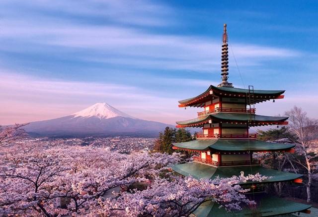 Tổng kim ngạch nhập khẩu hàng hóa từ Nhật Bản năm 2019 đạt 19,52 tỷ USD